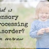 What is Sensory Processing Disorder? An Overview